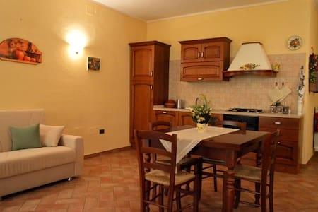 """Appartamento """"il Glicine"""" - Chianni"""