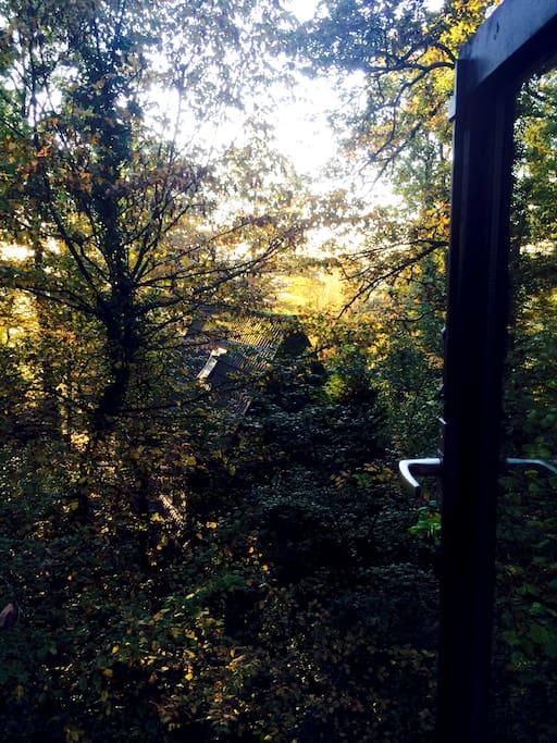 Uitzicht in de ochtend vanuit de slaapkamer