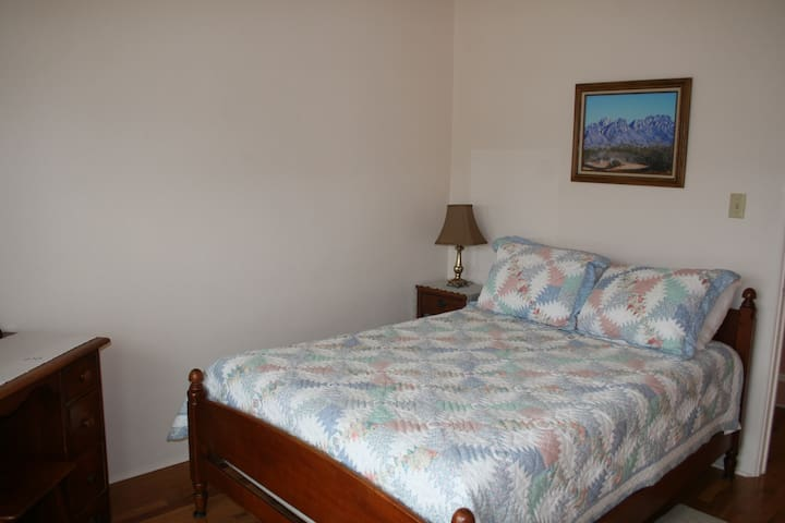 Bedroom 1 with a double bed a dresser and large closet.