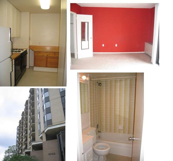A Fully Furnished 600 Sq Ft Studio Apartments For Rent