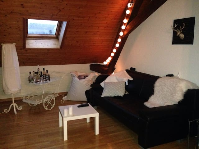 Charming attic with beautiful view! - Liestal