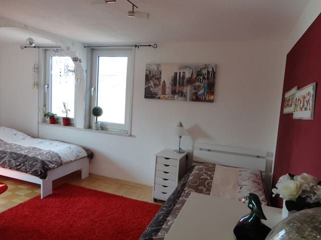 Comfortable room, 11 min to fair - Frankfurt - House