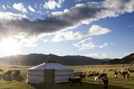 Stay in Mongolian Nomadic Family