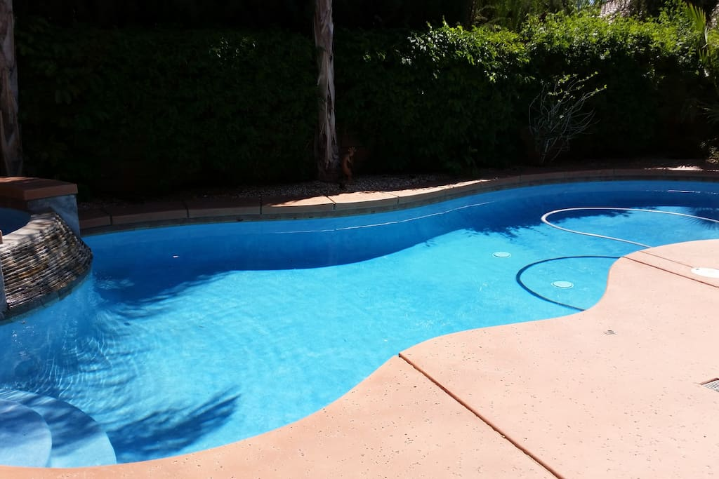 Beautiful salt water pool and Jacuzzi to enjoy and relax by in the private back yard.