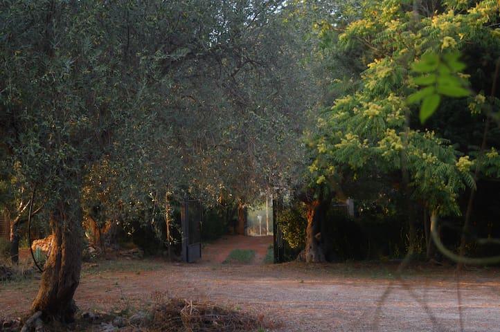 casa fondachello - Pietraperzia - Villa