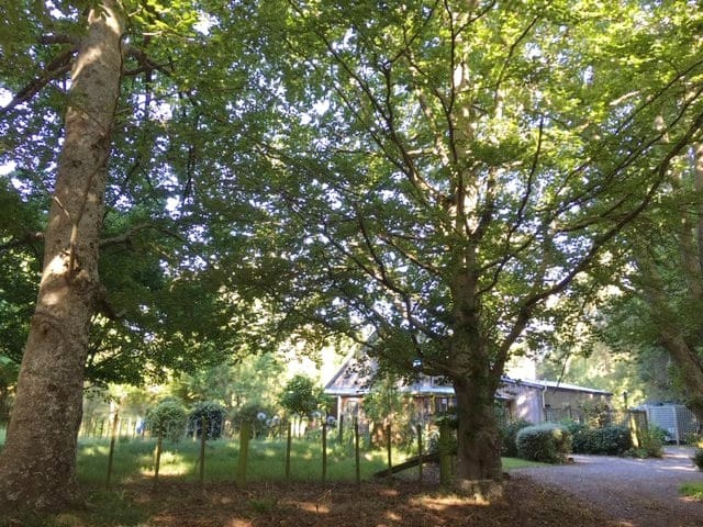 Otahuna Cottage: 10 mins to Lacewood Wedding Venue