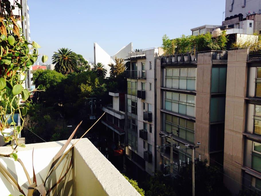 View from balcony, vista desde balcón