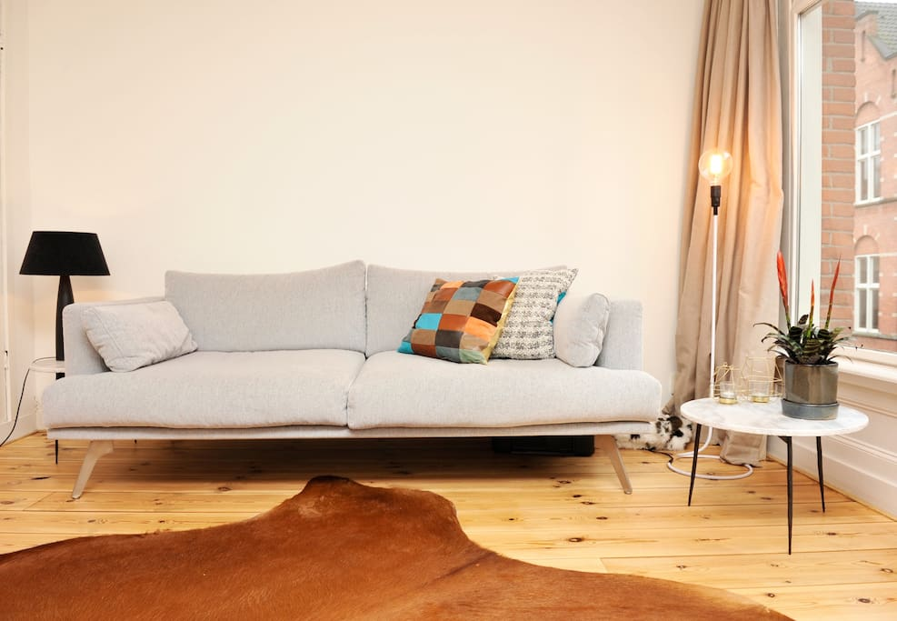 Lovely living room with great couch
