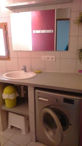 La salle de bain avec vasque, lave-linge, douche et wc.