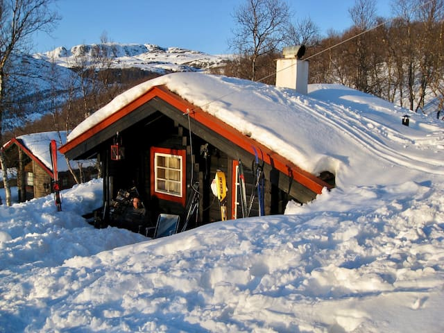 Tyin, tiny cozy mountain cabin with ski in/out.