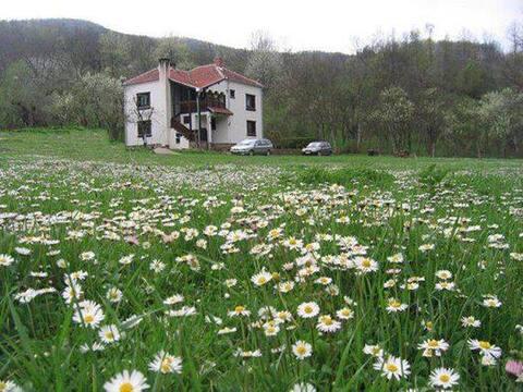 Vila Babin Zub