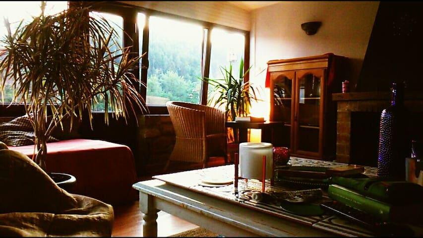 VIVIENDA REFORMADA,CASA DE PIEDRA - Trucios-Turtzioz, Euskadi, ES - Apartment
