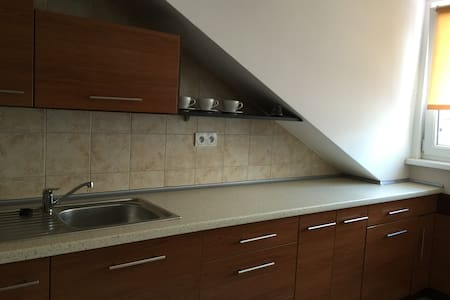 Apartament 4 osobowy - Ustrzyki Dolne - Apartment