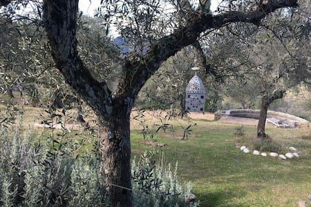 Casa de campo con encanto. - Badajoz - Hus
