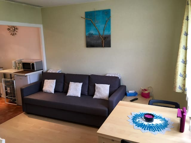 2rooms, 5min Geneva,Airport,Palexpo,ONU,CERN - Ornex - Appartement