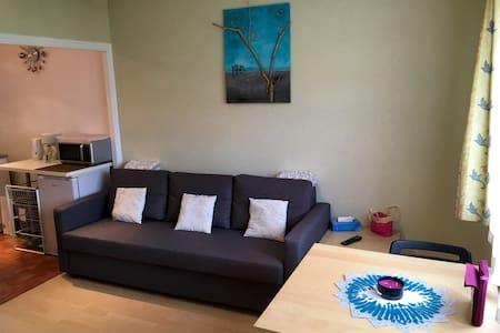2rooms close to GVA,Airport,ONU,Palexpo,CERN,Arena - Ornex - Appartement