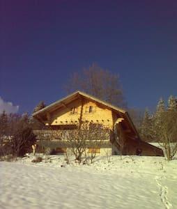 Mountain Ski Chalet on Les Carroz  bus route.