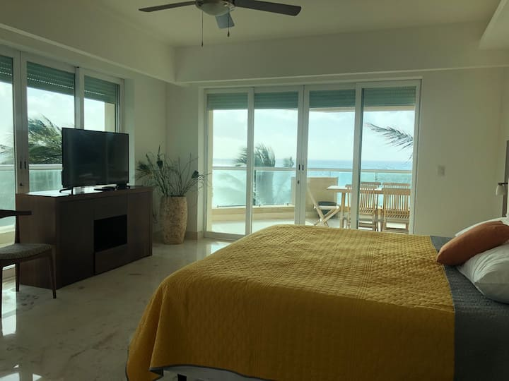 Beach front condo with spectacular view