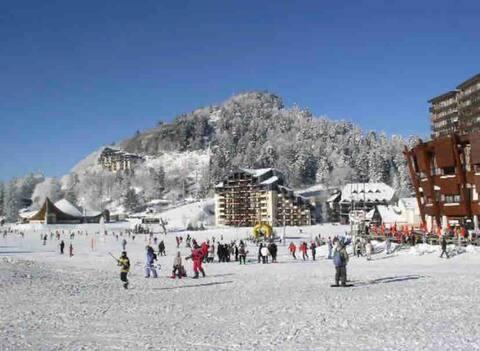 Studio 23m2 au cœur de la station de ski Le Lioran