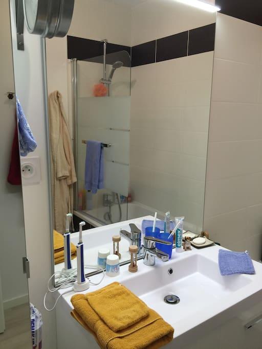 La vasque de la salle de bains. Dans l'armoire attenante se trouve une étagère que je réserve pour votre trousse de toilette