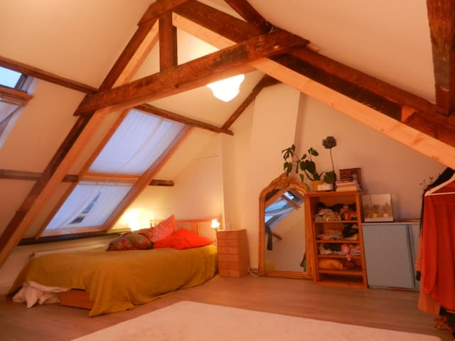 Big room in a house with garden in the hip North.