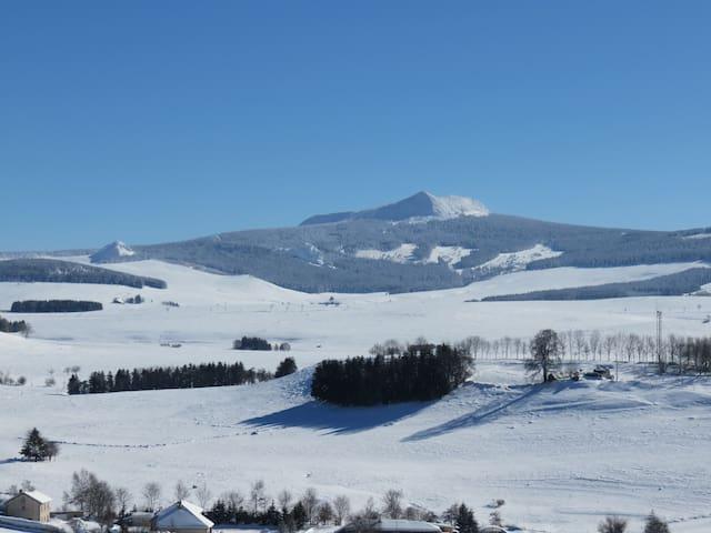 """""""La P'tite Burle"""" à la montagne vue sur Mt Mézenc"""
