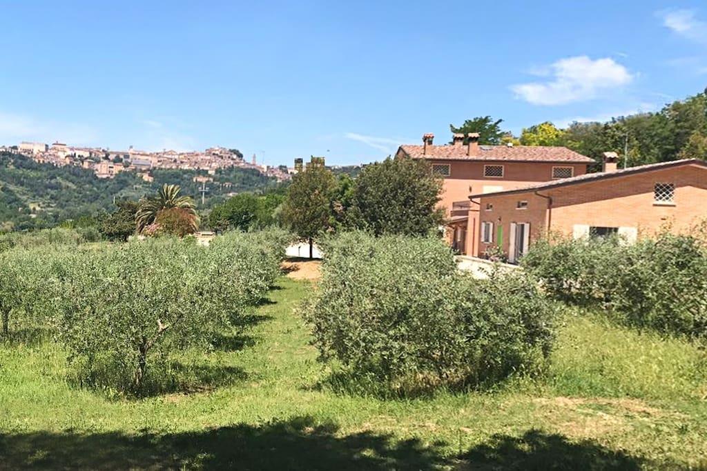 Vista panoramica del Centro Storico di Perugia