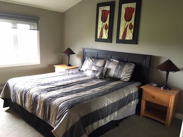 Master bedroom with king size bed, TV, and walk in closet.
