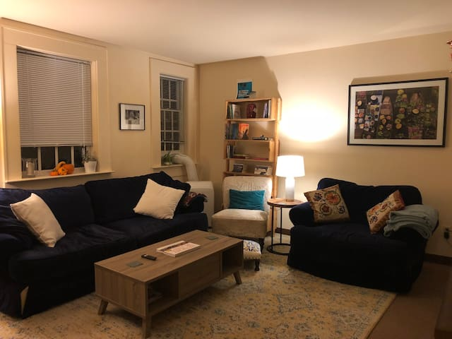 Large 1 BR apartment-- quick walk to downtown