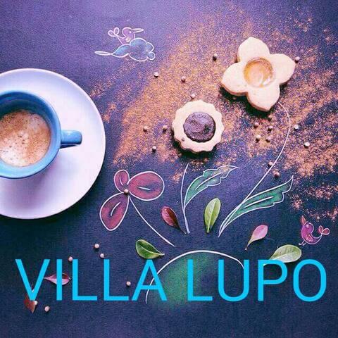 VACANZE NEL SALENTO IN VILLA LUPO - Lecce - Villa