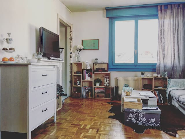 Sweet studio in Vevey near the lake ! - Vevey - Lejlighed