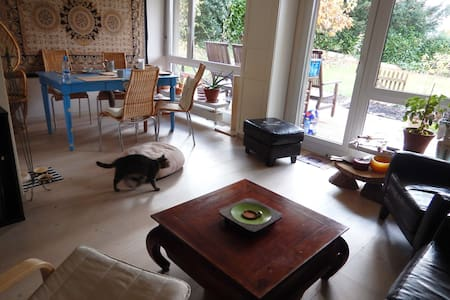 Easy going Apartment with 2 Cats and a Big Terrace - Schlieren