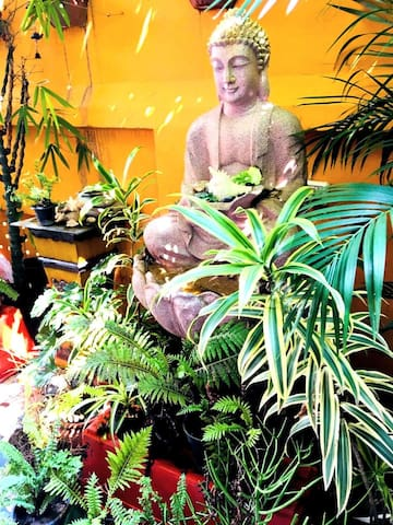 Feel the bliss emanating from  Buddha placed at the lush green Garden