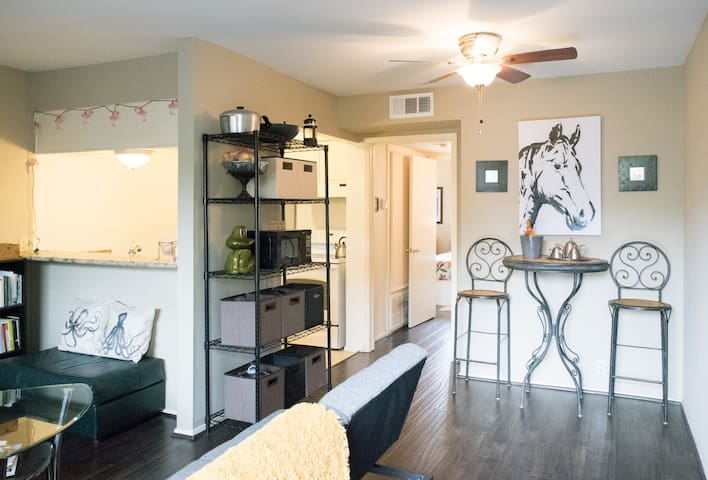 1BR in the Heights. Best Location! - Houston - Apartment