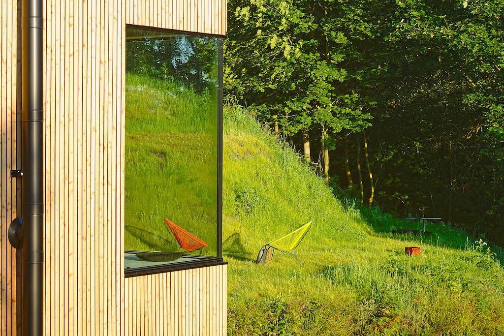 Blick in den kleinen Garten und Wald
