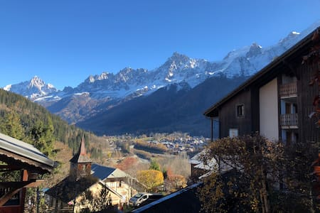 Ski-In 1 Bedroom Appartement in Les Houches
