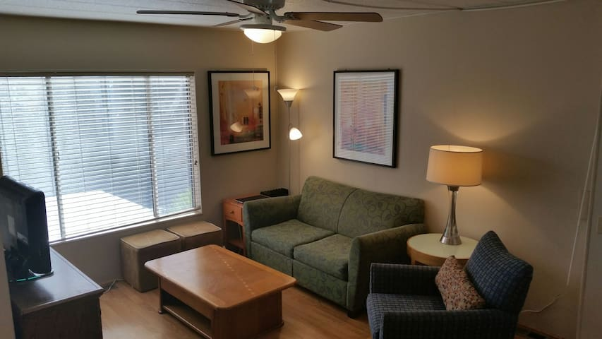 1 Bedroom Private Traveling Professional's Dream! - Fresno - Apartment