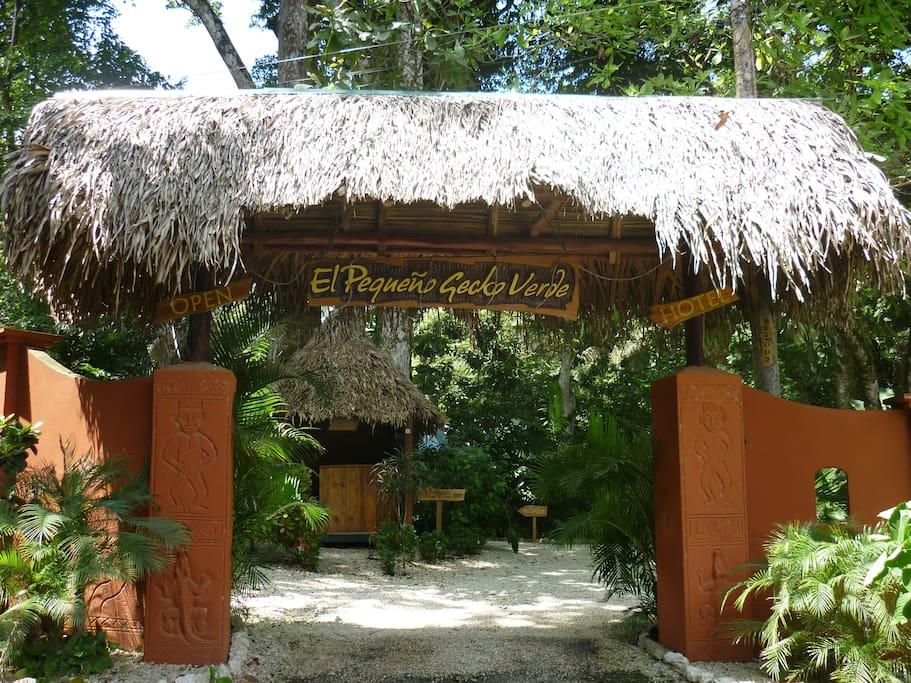 Entrance of Pequeño Gecko Verde
