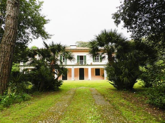 Villa storica in Versilia piano terreno