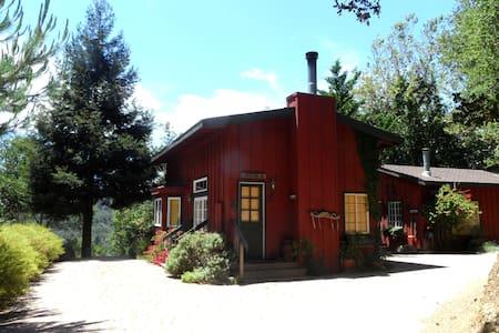 Driftwood cabin, Big Sur - Kisház