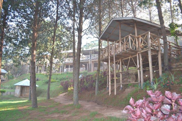 Bandas at Bugombe Island Gateway