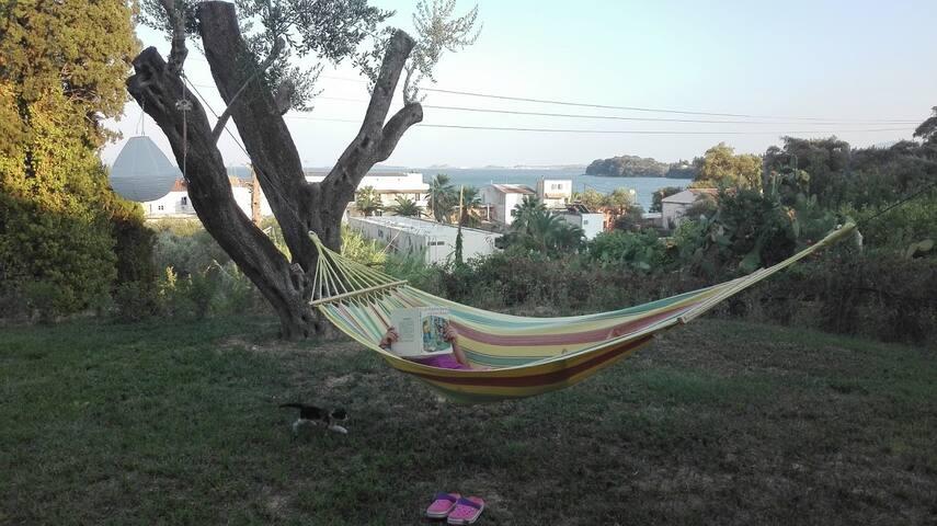 Dimitra Apartment Ipsos Corfu