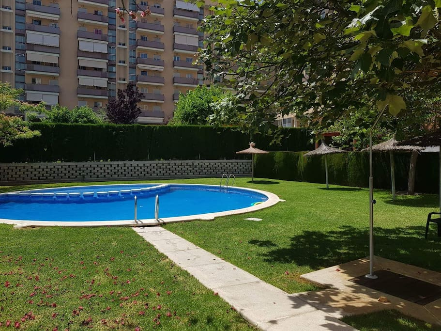 La piscina. The swimming pool