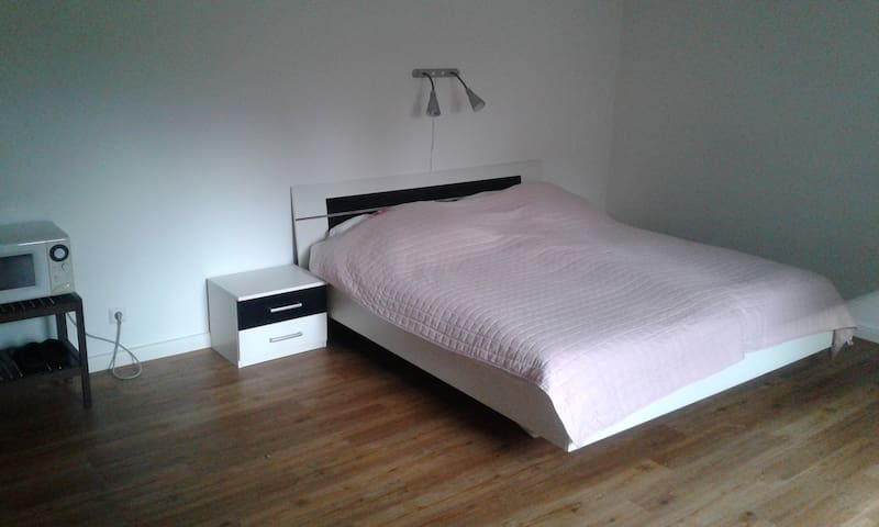 Spacious room near Hannover Messe and CeBit - Lehrte - House