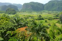 Viñales Valley + Cigar Farm + Indian Cave + Horseback Riding Daytrip
