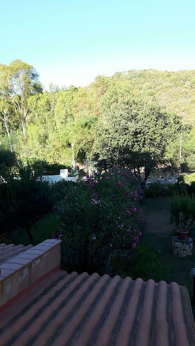 Vista retro casa \ Back house view