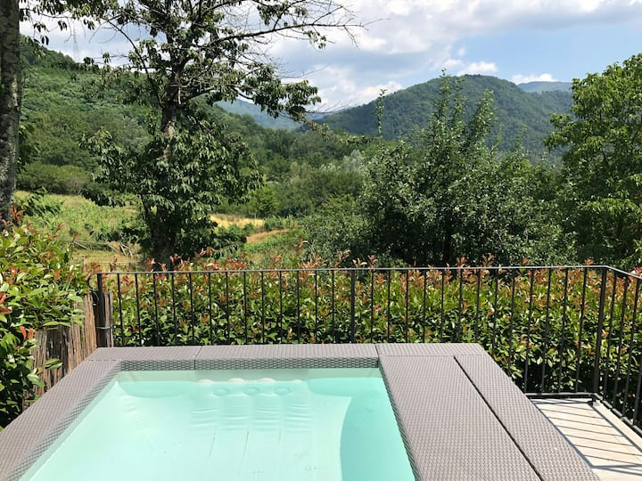 Lovely house for 4 with private plunge pool