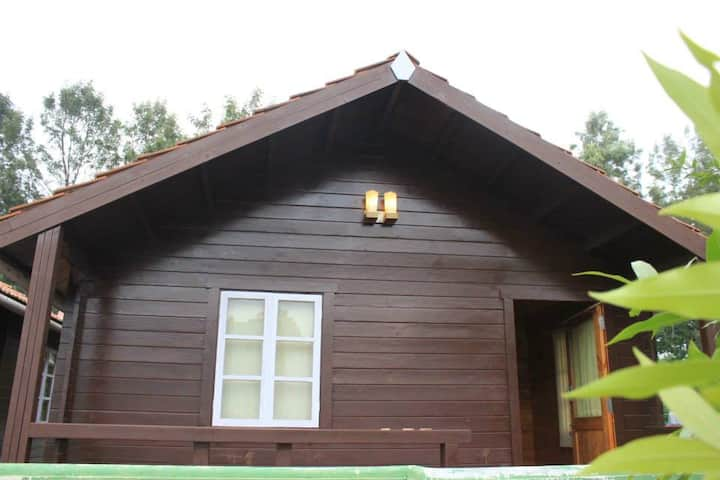 TREK INN YERCAUD AND WOODEN HOUSES