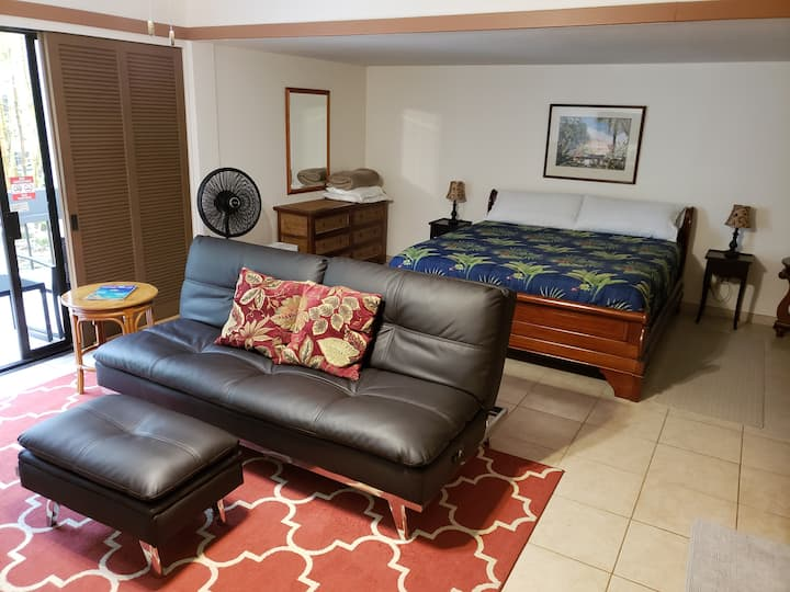 Spacious apartment in HILO