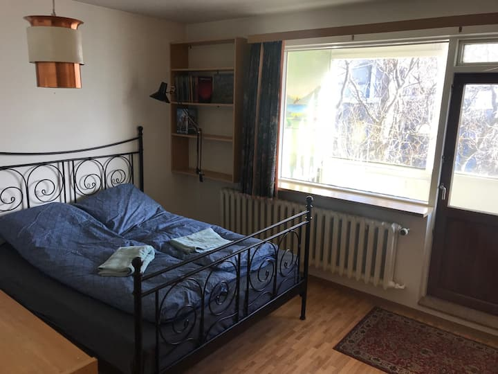 A spacious apartment right downtown Reykjavik